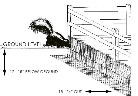 skunk-trenching.png