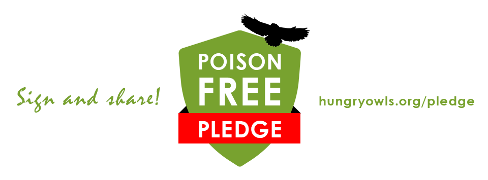 poison-free-facebook-cover-960x355px.png