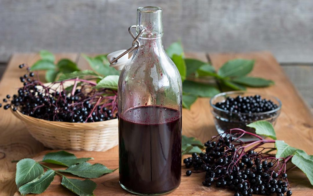 elderberry-small-1080x675.jpg
