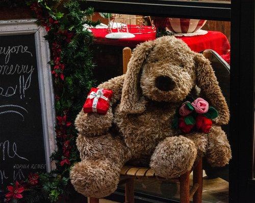 Dahlonega Ga Christmas.Christmas In Dahlonega Sophia Renee