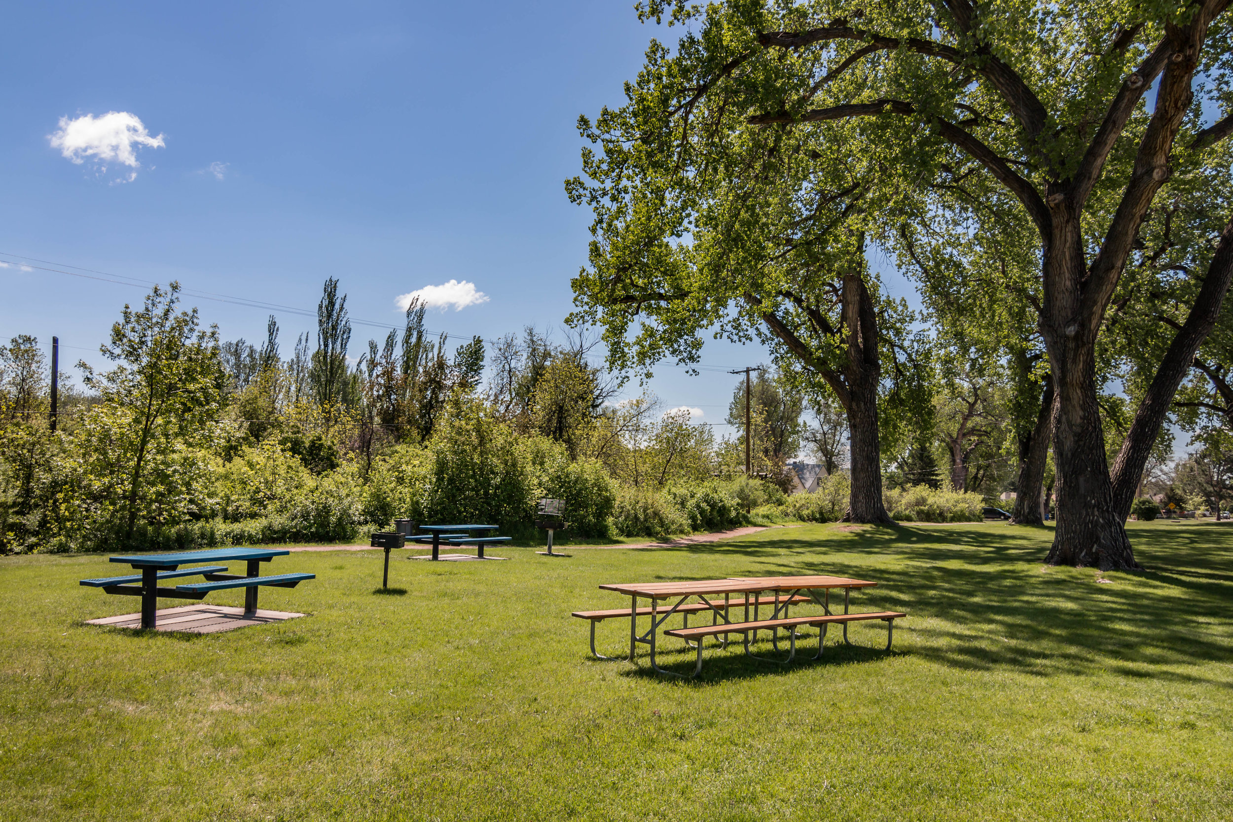 11-The Park Provides Pinic Area for an Perfect Lunch Outdoors.jpg