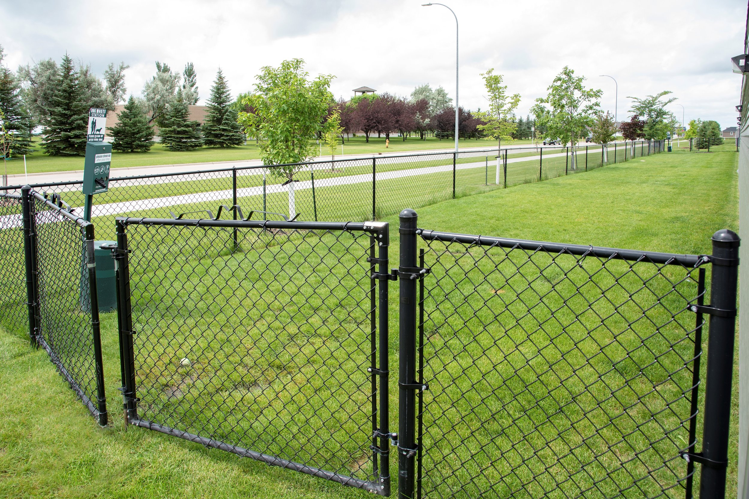 Dog Park for Your Furry Friend