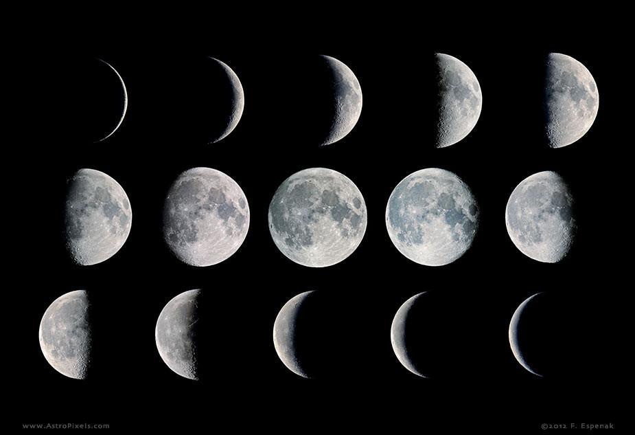 World-Record-Striper-Moon-Phases_91406367-4d4f-4816-8572-2657d1e4635f_1024x1024.jpg