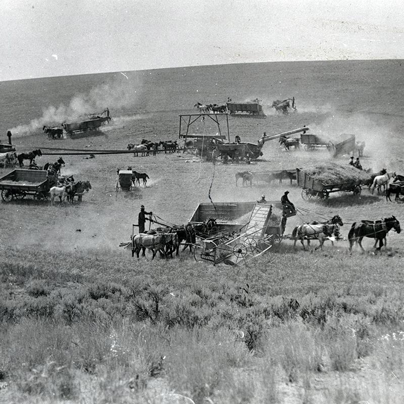 Prosser, 1910