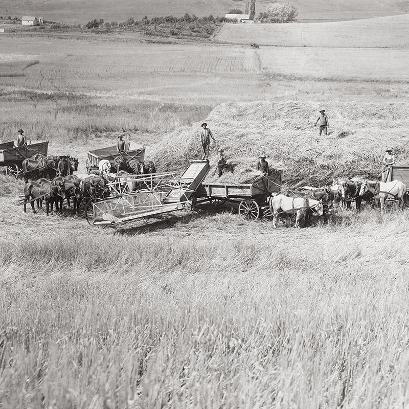 Colfax, 1910