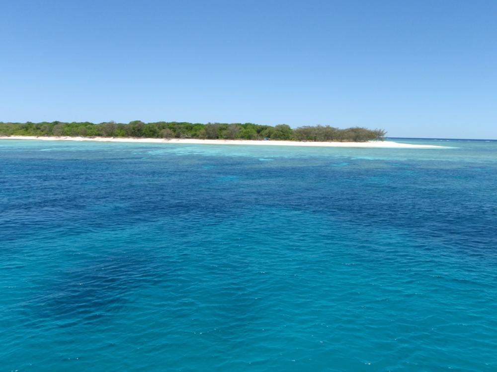 LADY MUSGRAVE ISLAND -