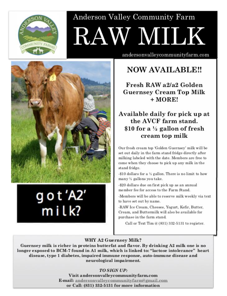 raw milk.jpg