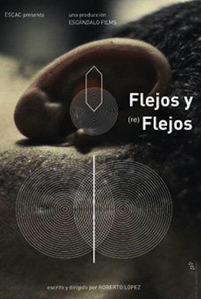flejos_y_reflejos_s-362288786-large.jpg