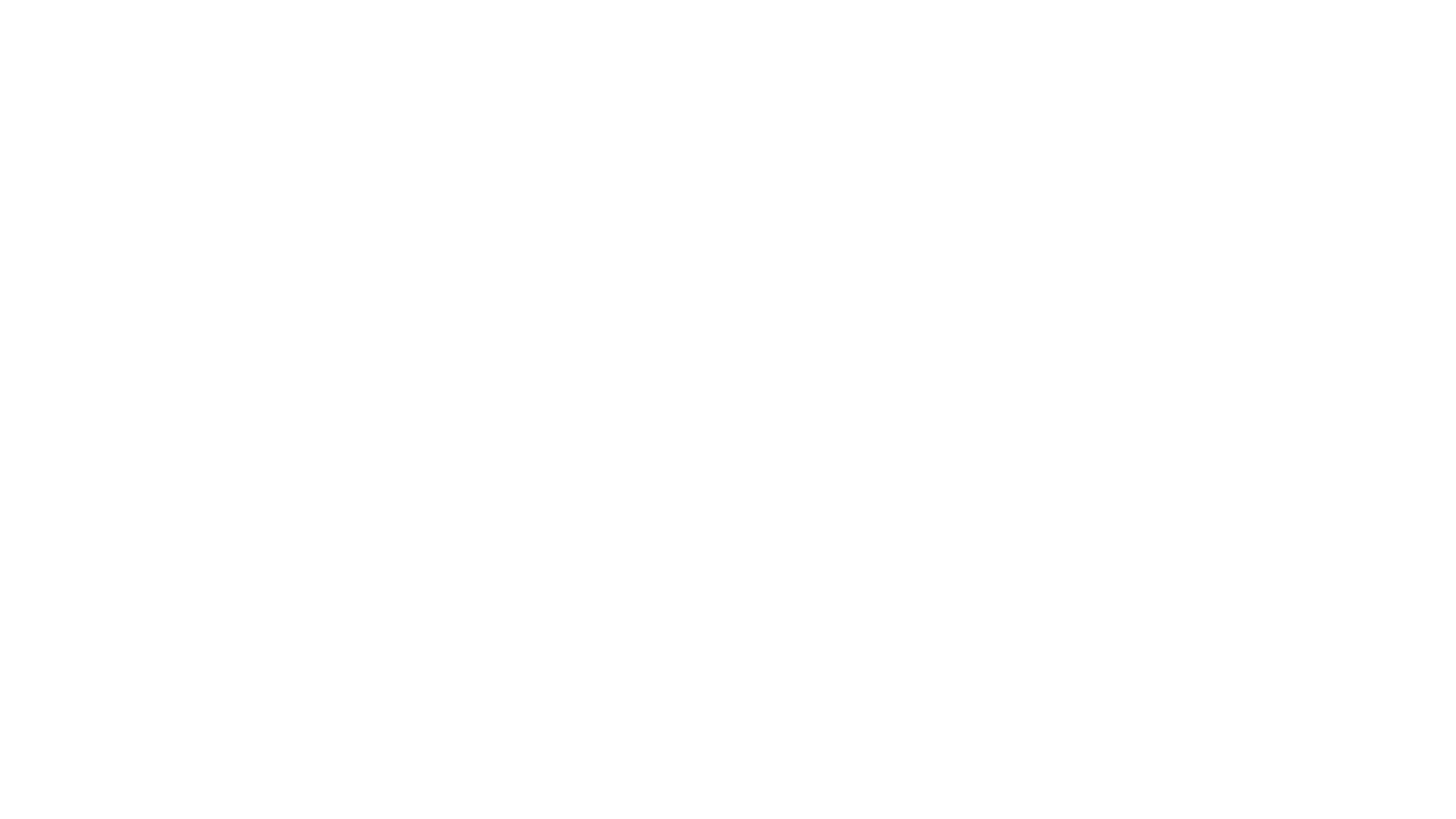 the spot logo white.png