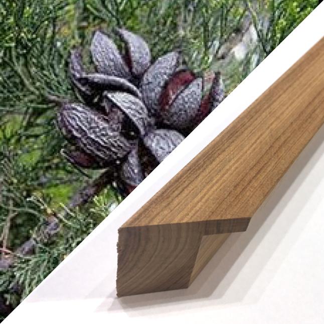 Cypress Pine Timber frame