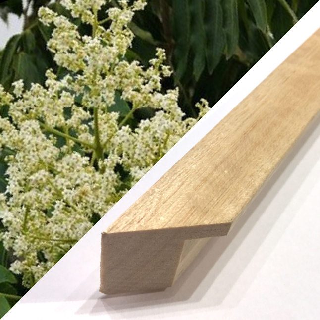 Silver Ash Timber Frame