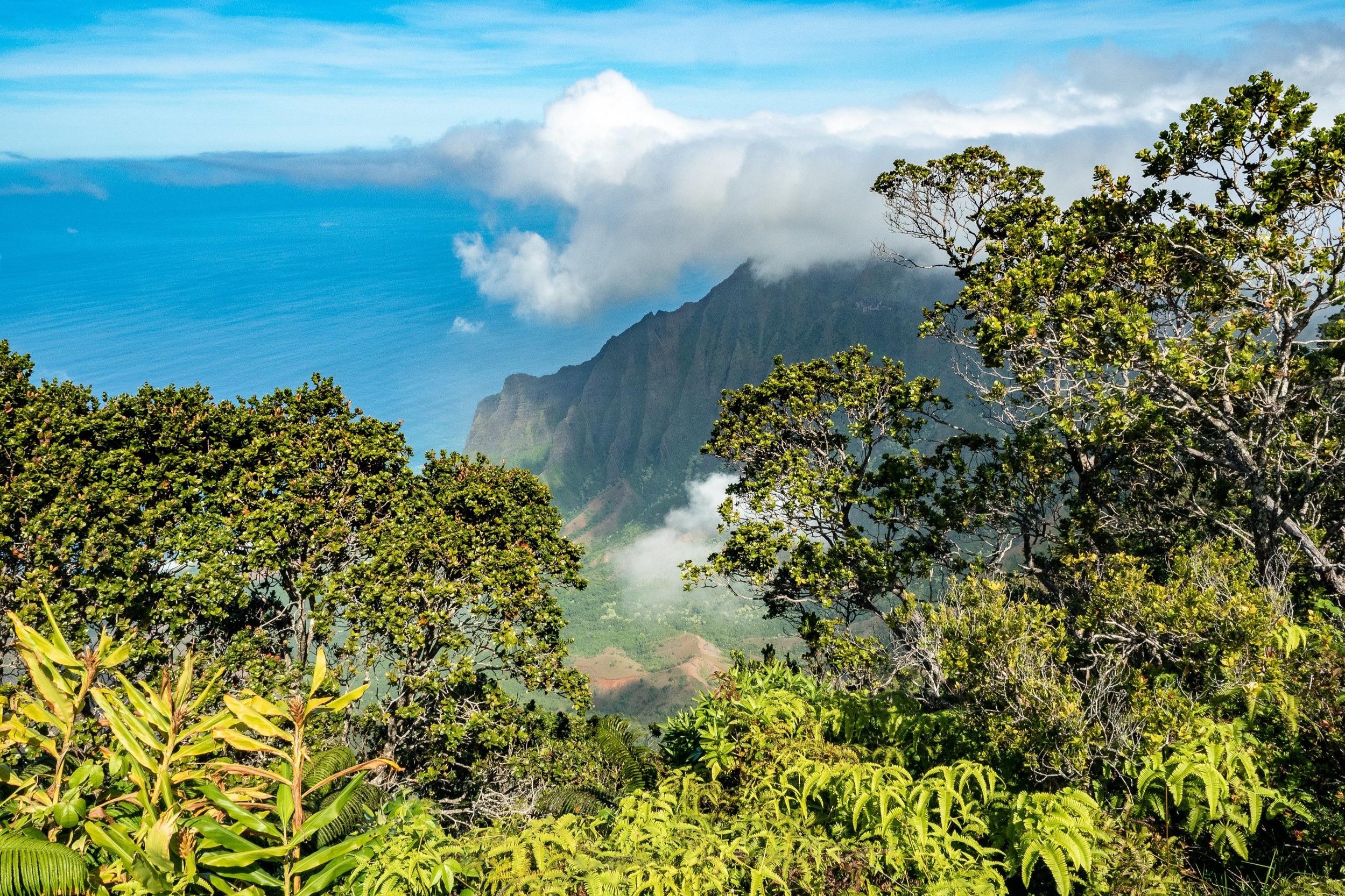 カウアイ島   美しい大自然が広がる島