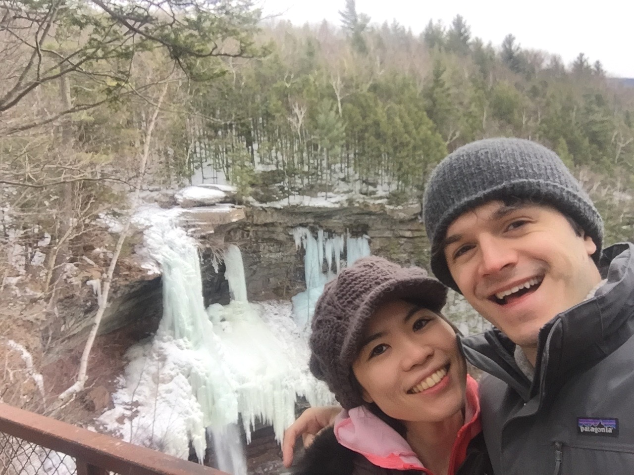 (March 2019; at Kaaterskill Falls, NY)