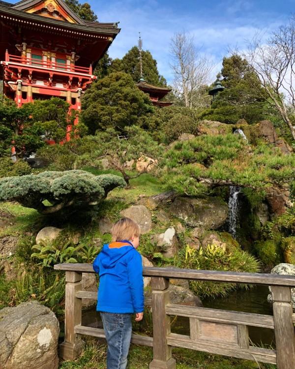 japanese tea garden san francisco.jpg