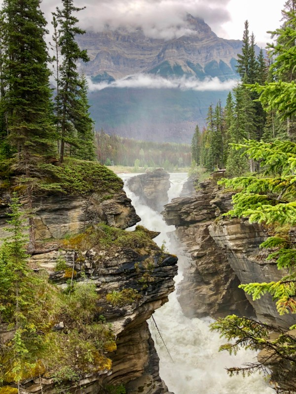 Athabasca Falls near Mount Kerkeslin Campground