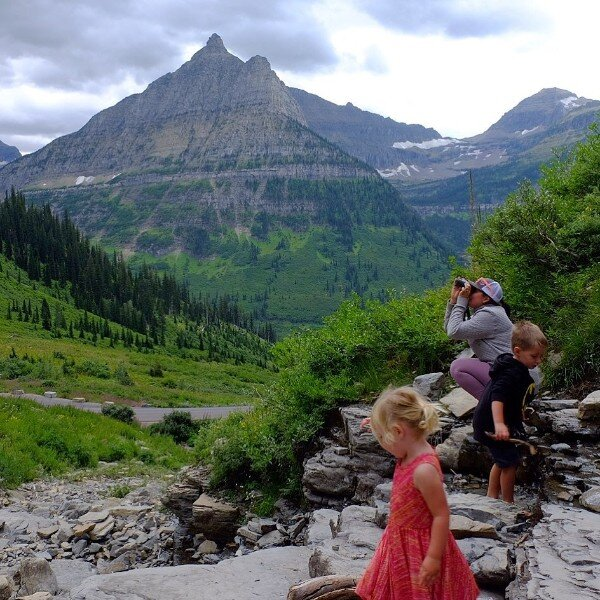 going to the sun road glacier national park with kids.jpg