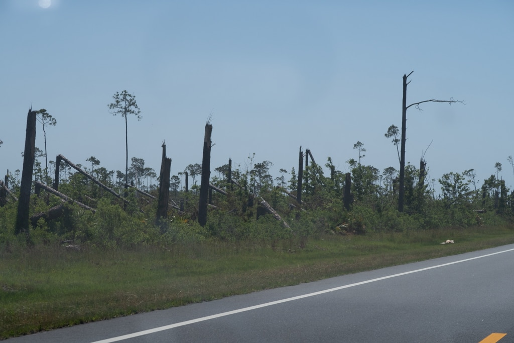 20190525-Hurricane Michael-0024.jpg