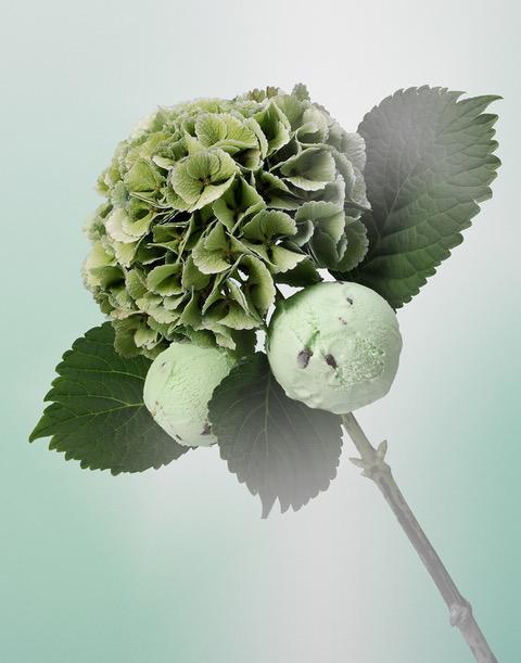 Ice Cream Mint Choc RET11x14LR.jpeg