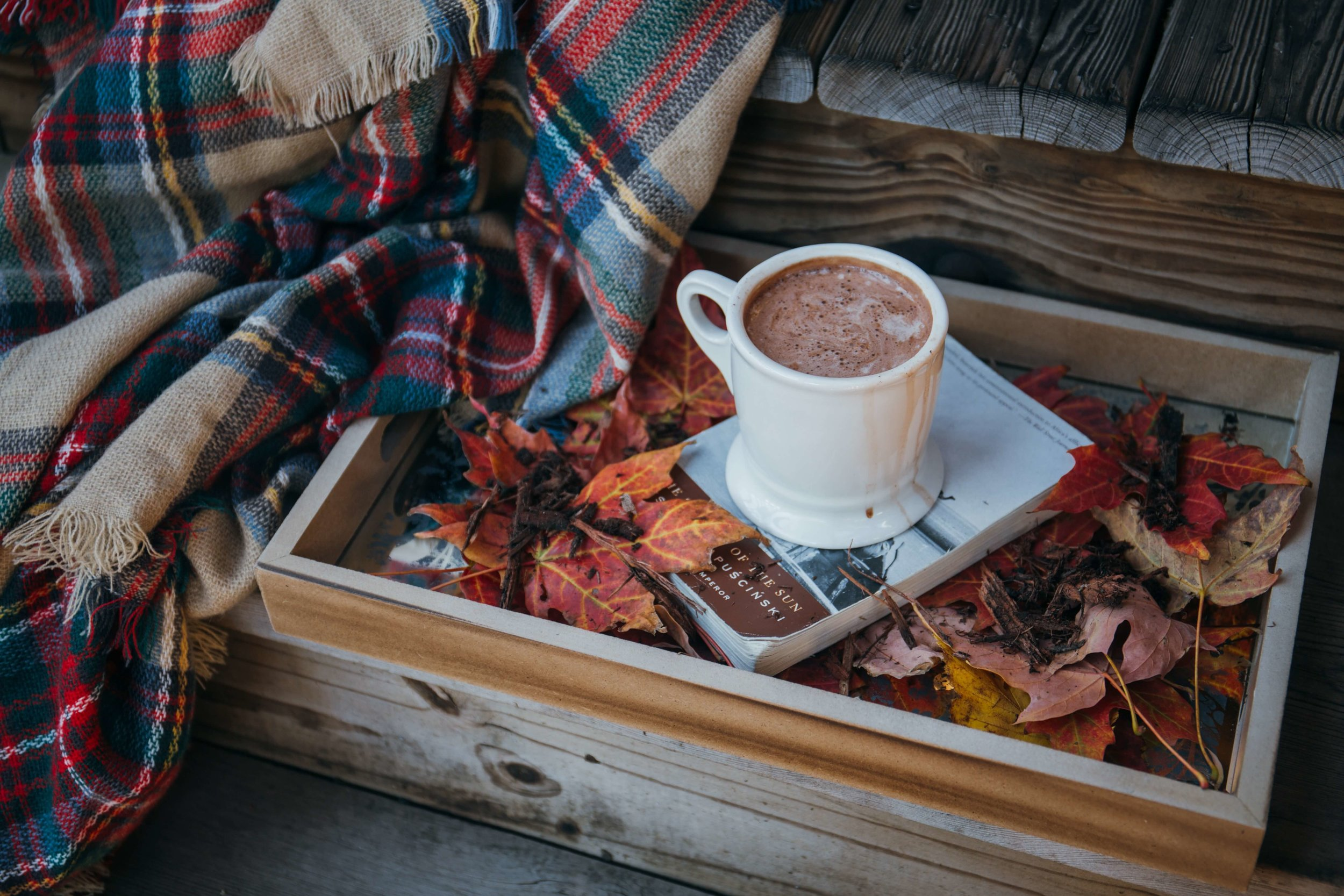 Airbnb guest with hot chocolate and book in Autumn