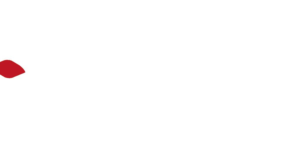 AR v2.png