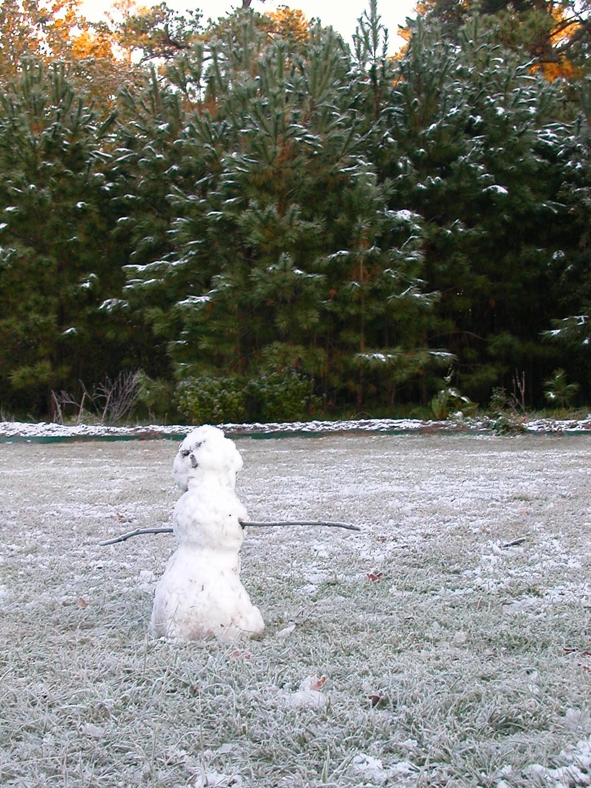 snowman-in-park-2009.jpg