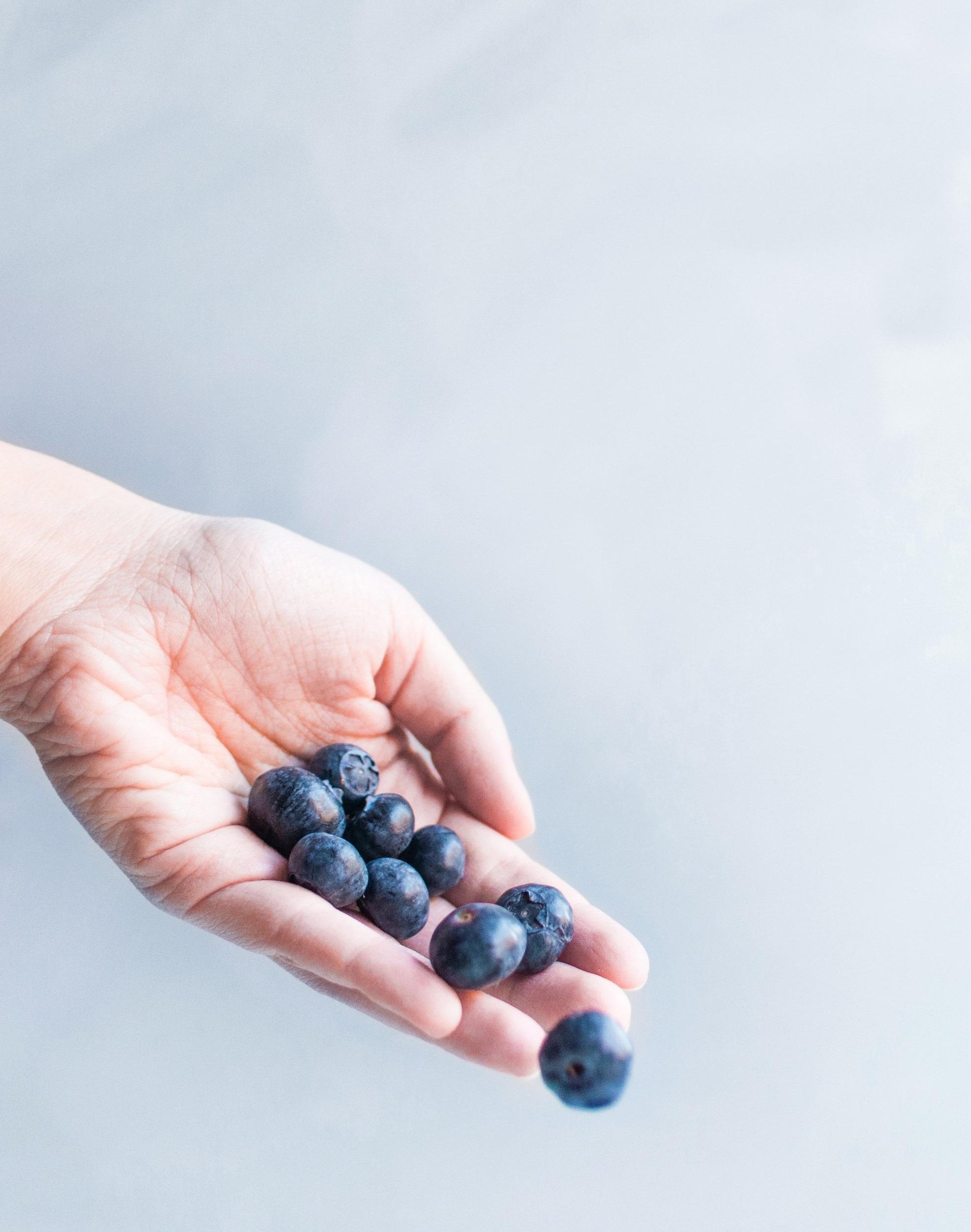 Antioxidantien stimulieren das Zellwachstum und unterstützen die Zellen des Körpers in ihrer Funktion. -
