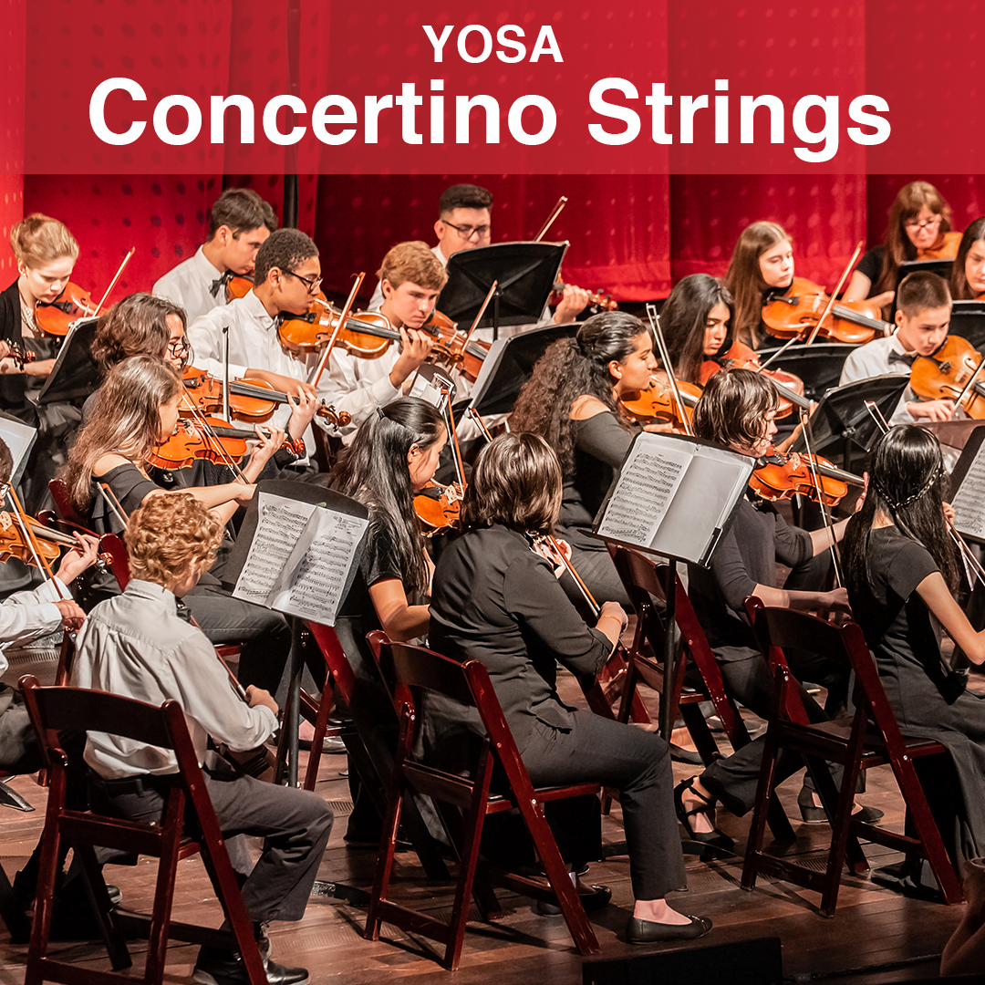 YOSA-Concertino-Strings.png