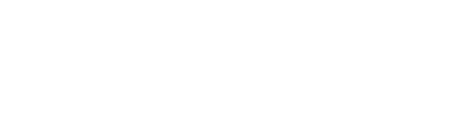 17040 Swoop Logo & Destination Bar Lockup AW white small.png