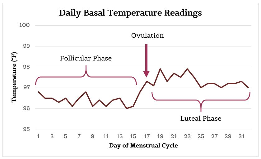 Basal body temperature is your body's temperature at rest and should be taken in the morning immediately after waking. An increase in temperature of 0.5-1 degree mid-cycle indicates ovulation. This graph shows the increase in basal body temperature at ovulation, which is sustained during the luteal phase. Temperatures for this graph were borrowed from a patient's data journal.