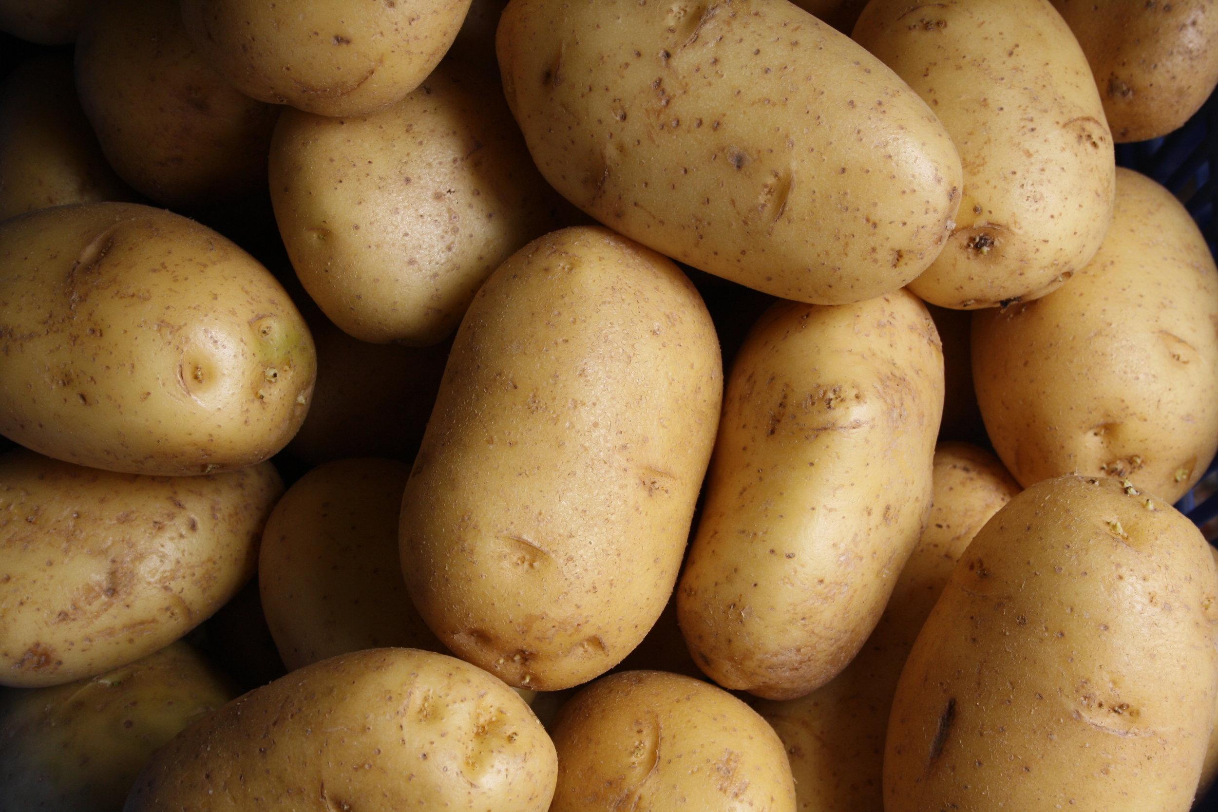 - Potato Bar Dinner