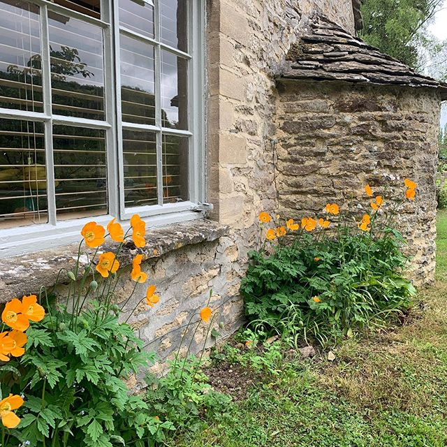 Exterior decorating,sometimes using a colour instead of white can be very effective#oxfordarchitects #inhomeconsultations #decorstyling #decorinspiration #colourconsultant #thecotswolds #windowcolour #burford #swinbrook