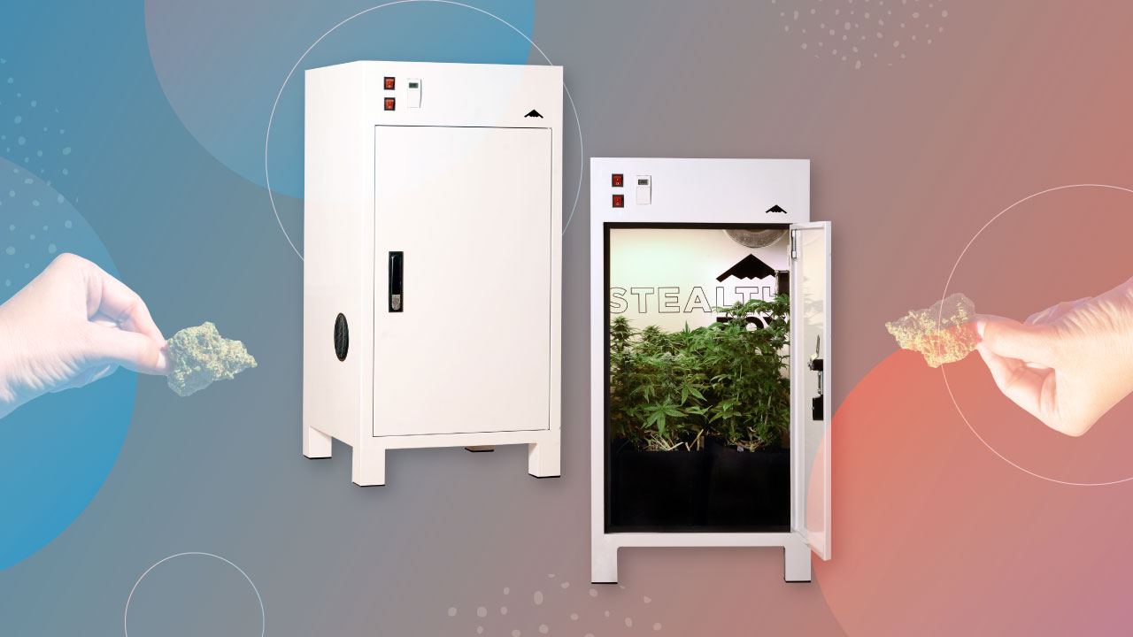 How To Grow Cannabis In A Small Space Year-Round - https://lift.co