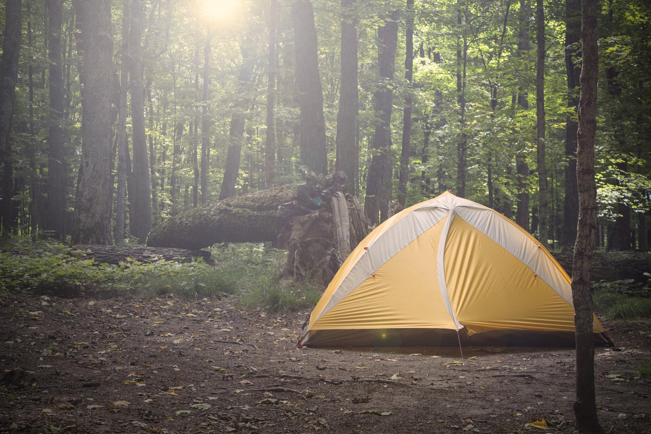 Camping Trip in Algonquin