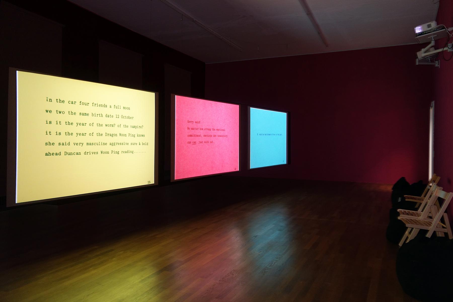 Carolee-Schneemann-Kunsthalle-Winterthur-2018-5