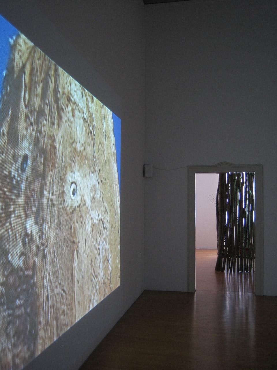Wael-Shawky-Kunsthalle-Winterthur-2007-1.jpg