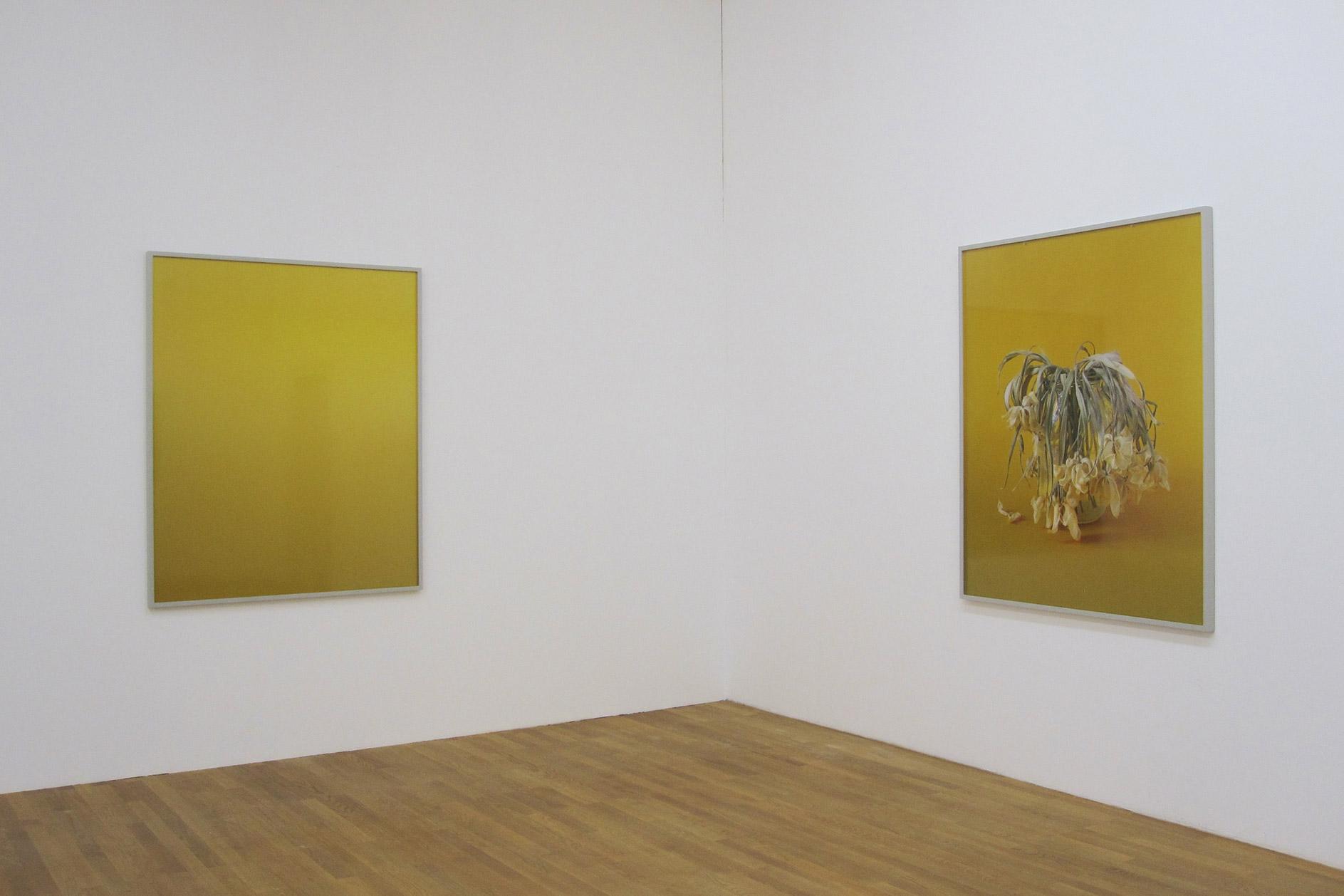 Susanne-Kriemann-Kunsthalle-Winterthur-2011.jpg