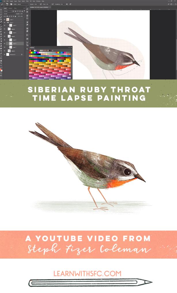 SIBERIAN RUBYTHROAT_STEPHFIZERCOLEMAN.jpg
