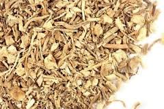 Butcher's Broom - We use it for:  Circulation, phlebitis, leg cramps, varicose veins, hemorrhoids, restless leg syndrome.   Magickal:  A variety of broom best-suited for ritual brooms for a Wiccan temple.