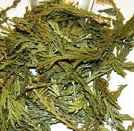 Cedar Tips - We use it for:  Moth and insect repellent.   Magickal:  Money, purification, protection, healing, spirituality, Yule & Midsummer, consecration, Wiccanings, baby blessings. Unicorns love cedar boxes.