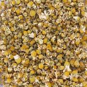 Chamomile - We use it for:  Improving appetites, nervous disorders, parasites, worms, sedative, killing bacteria and fungi (especially gram positive bacteria and candida albicans).   Magickal:  Money, Sleep, Love, Purification, Midsummer (Litha), Yule. Used to assist a priest's call on the Sun God. Success.