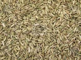 Fennel - We use it for:  Anti-gas, slowing appetite, slowing effects of chemotherapy, morning sickness, colic.   Magickal:  Purification, Good Health, protection, deflect negative energies, Midsummer (Litha).Preserves and strengthens sight (physical and pyschic).Helps us face danger and makes us strong and capable of facing dire times.Corresponds to element of fire