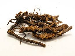 Osha Root - We use it for:  Respiratory ailments including pneumonia, influenza, colds, bronchitis, tuberculosis, fevers, coughs, cold phlegm, indigestion, gas, delayed menses, rheumatic complaints, hay fever and asthma, disinfectant skin wash, stimulating sweating, stomach bitter, gas. Oshas are emmenagogues, so not recommended for pregnant women. The grated root is mixed with salt and drunk as an emetic, and steeped in whiskey is has been used for malaria and incipient colds.   Magickal:  Carry the root to ward off rattlesnakes & witches' spells. Attracts good luck. Considered sacred by the Native Americans & widely esteemed by them for its broad and effective warm healing power. Tribes burned it as incense for purification, warding off gross pathogenic factors & subtle negative influences.