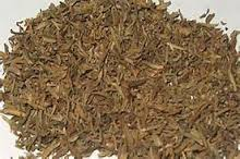 Sheep Sorrel - We use it for:  Fevers, catarrhs, hemorrhages, urinary disorders