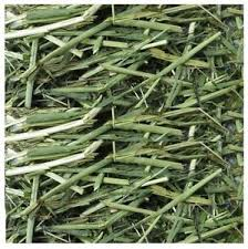 Sweetgrass - We use it for:  In tea: fevers, coughs, sore throats, chafing and venereal infections, stoping vaginal bleeding, expelling afterbirth. Stem (soak in water) for: windburn and chapping, and as an eyewash. Smoke from the burning leaves has been inhaled in the treatment of colds. In poultice: cleansing wounds, drawing out bacteria from wounds.   Magickal:  Burned to call spirits. Braid together to represent the uniting of mind, body, and spirit.