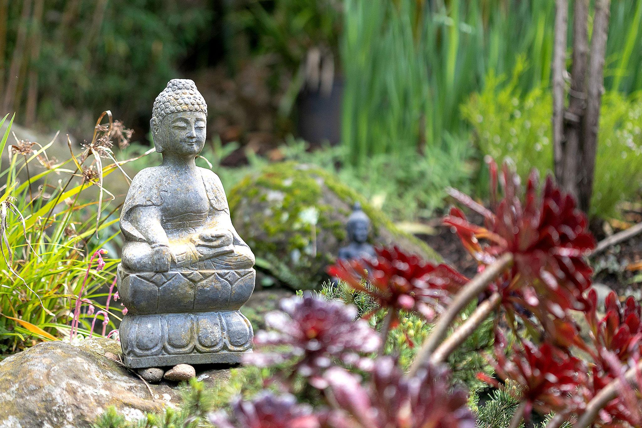 38 Zen garden.jpg