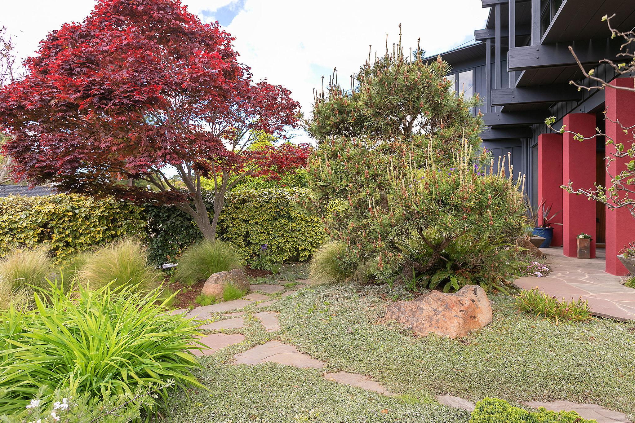 40 Front garden2.jpg