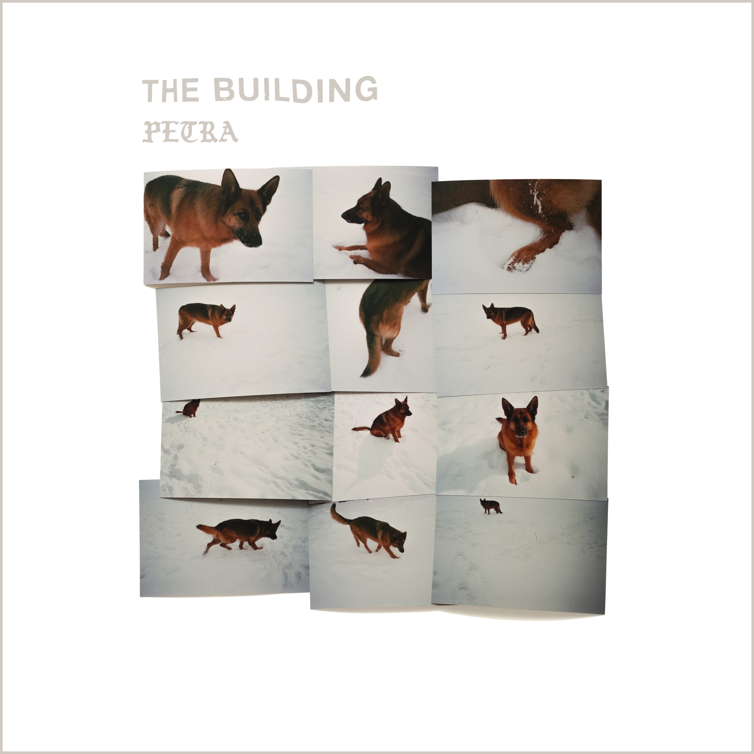 VINYL - DIGITAL - THE BUILDING - PETRA - 20191. Transformed2. All Things New3. Purifier4. Warning5. Life Half Lived6. When I Think Of You7. Never Understand8. Never Was Alone9. Peace's Eternal Truth Renews All