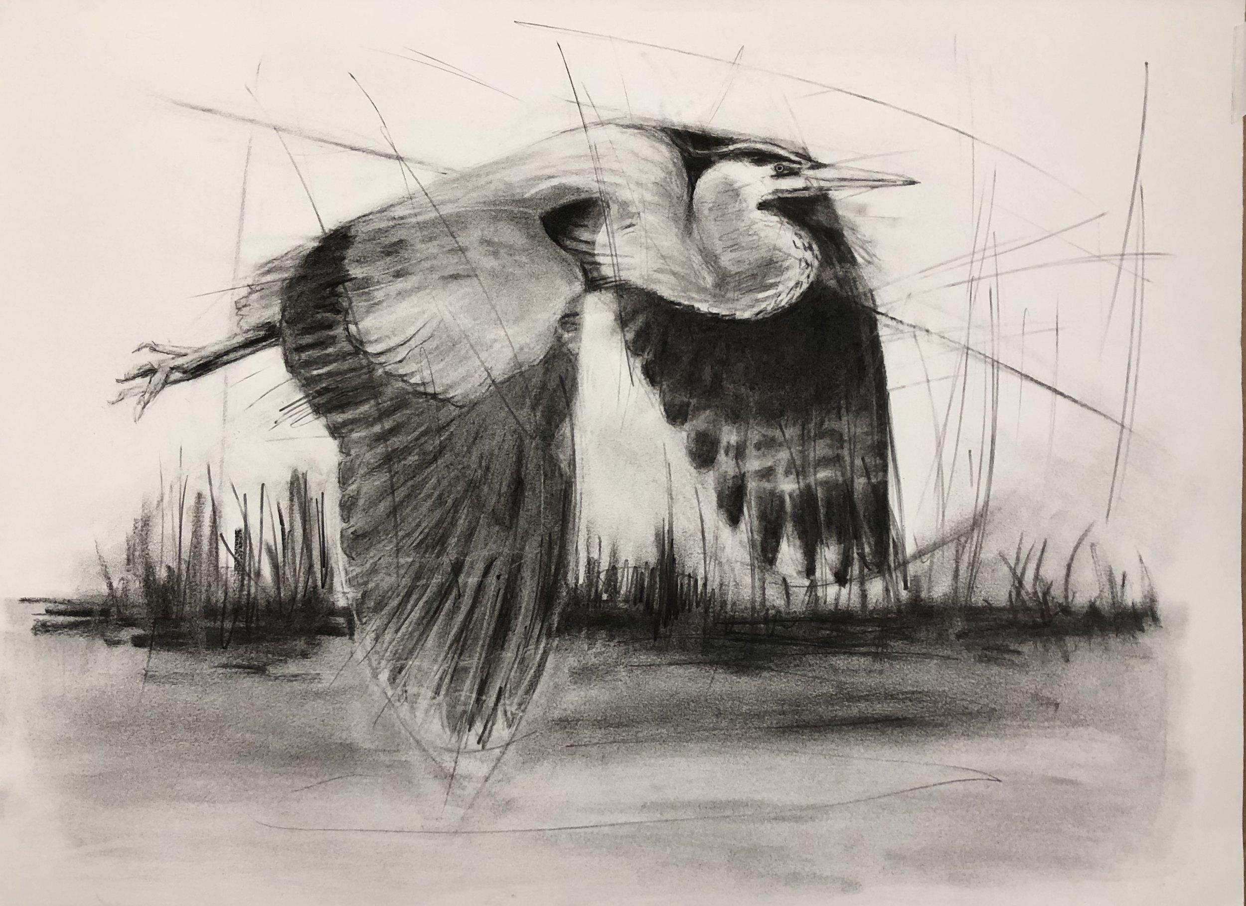Heron.