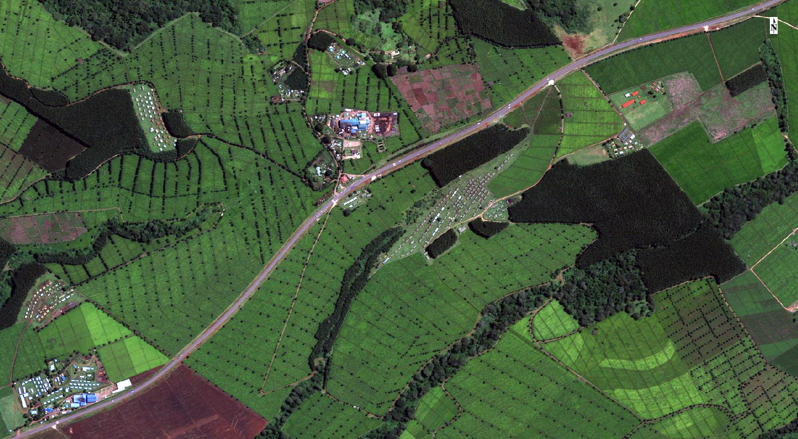 AI scans satellite images for farms that dispose of waste illegally.