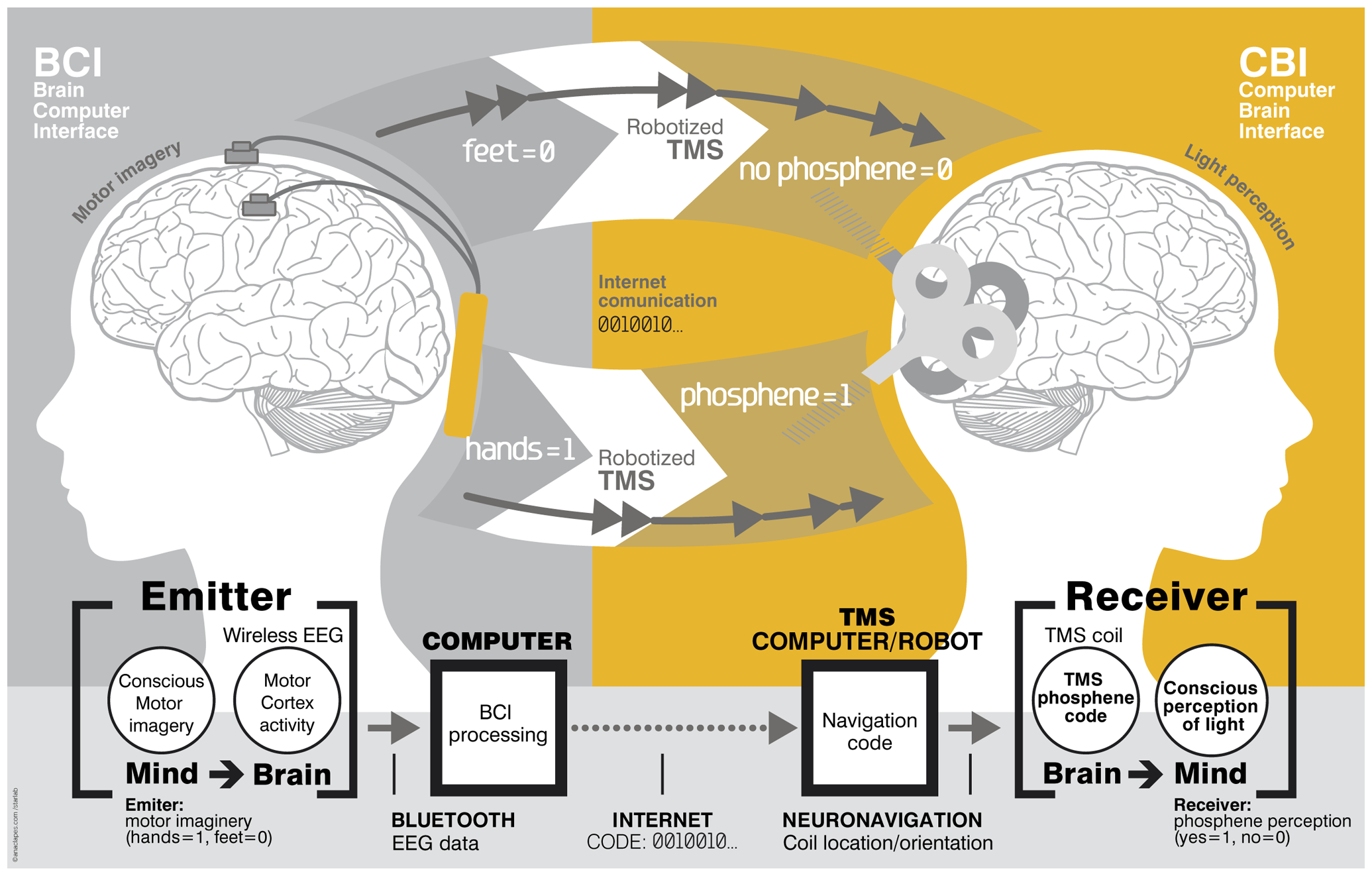 A proposed brain to brain communication model, allowing for yes or no wireless communication between minds.